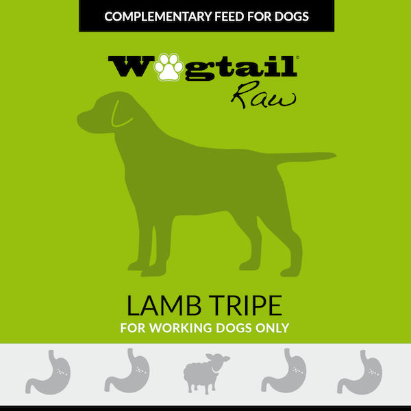 lamb tripe for dogs